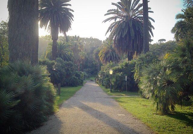 Passeggiando nell'Orto Botanico di Roma